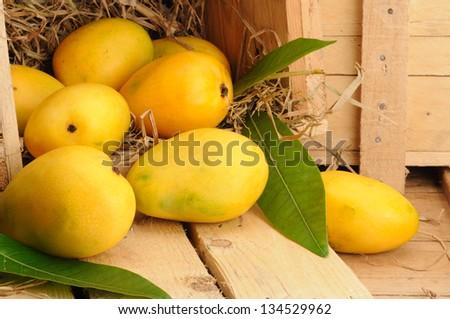 fresh mango fruit in a wooden box - stock photo