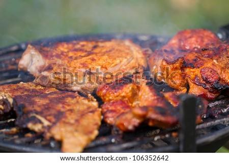 Fresh meat in white plate. Picnic picture proper for restaurant menu design. - stock photo