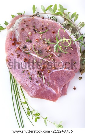 Fresh meat with pepper, mint, rosemary, thyme and spices - stock photo