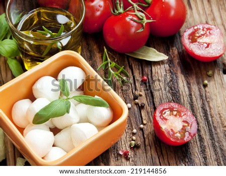 Fresh Mediterranean Ingredients,Mozzarella, Basil, Olive Oil, Tomatoes and Spices for Italian Cooking Recipe - stock photo
