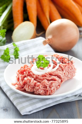 fresh minced meat with onion - stock photo