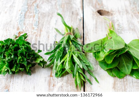 Fresh mint , tarragon and spinach, Selective focus - stock photo