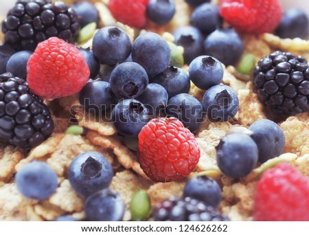 fresh muesli with fruits - stock photo
