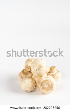 Fresh mushrooms - stock photo