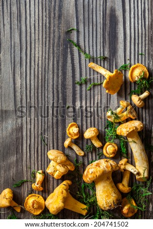 Fresh mushrooms with moss and leaves on wooden background - stock photo