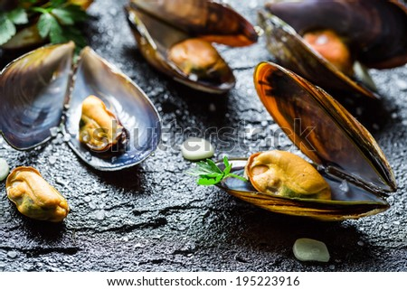 Fresh mussels served with garlic and parsley - stock photo