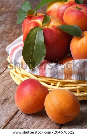 Fresh nectarines and apricots in a basket closeup on table vertical   - stock photo