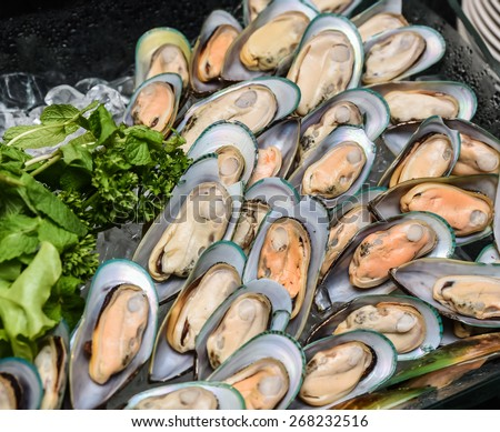 Fresh New Zealand mussel - stock photo