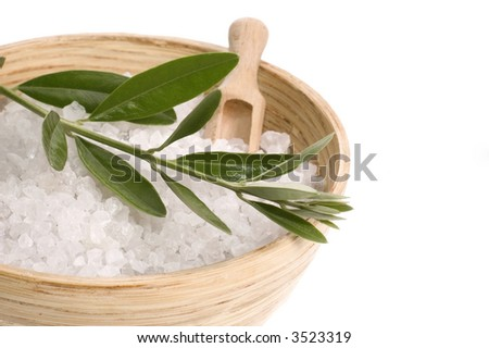 fresh olive branch and bath salt isolated on the white background. spa