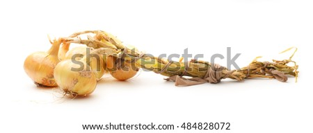 Fresh onion on the white background closeup