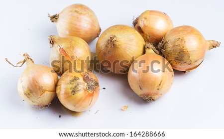 Fresh onion over white background