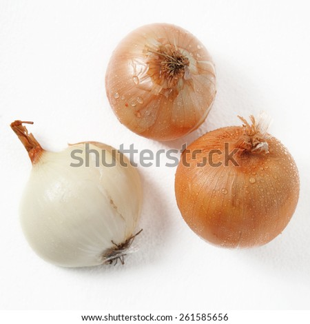 Fresh onion with water drops  on white - stock photo