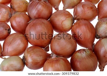 Fresh onions. Onions background. Ripe onions. Onions in market. - stock photo