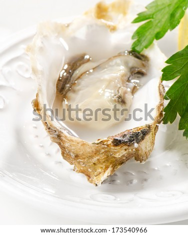 Fresh opened oysters on a white plate. Selective focus - stock photo