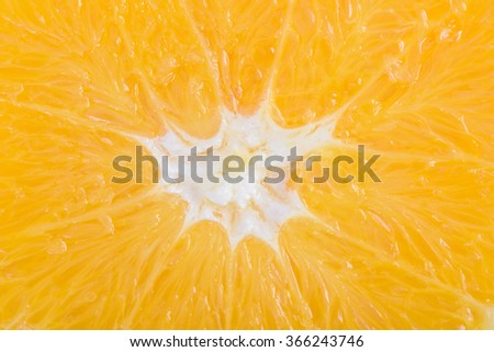 Fresh Orange Fruit Slice Interior