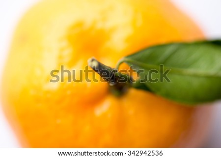 Fresh orange on the white background