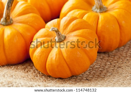 Fresh Orange Organic Pumpkin against a background - stock photo