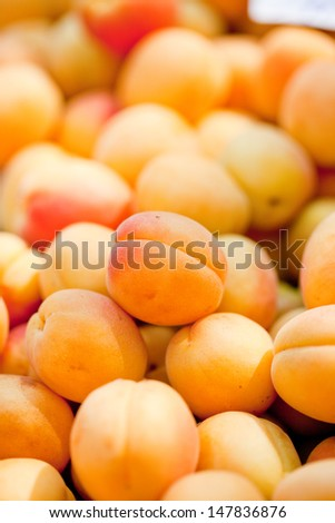 fresh orange red apricots peaches macro closeup on market summer  - stock photo