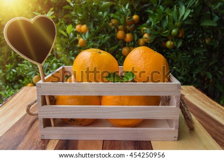 Pretty Fresh Oranges On Wooden Table Orange Stock Photo   With Exciting Fresh Oranges On The Wooden Table With Orange Tree And Garden Background With Astounding China Garden Morden Also Sienna Gardens In Addition Garden Beanbags And In The Night Garden Rucksack As Well As Herb Gardening Additionally Swing Chair Garden From Mshutterstockcom With   Exciting Fresh Oranges On Wooden Table Orange Stock Photo   With Astounding Fresh Oranges On The Wooden Table With Orange Tree And Garden Background And Pretty China Garden Morden Also Sienna Gardens In Addition Garden Beanbags From Mshutterstockcom