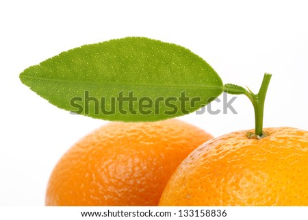 Fresh oranges with leaf - stock photo