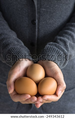 Fresh organic eggs on the hands of farmers. - stock photo