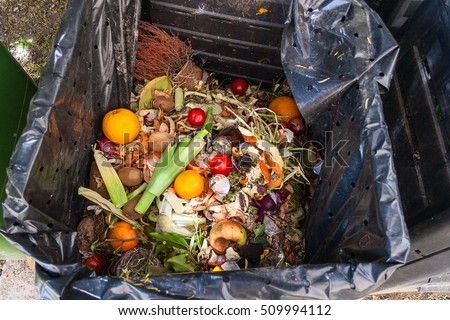 Food Waste Stock Images Royalty Free Images Amp Vectors