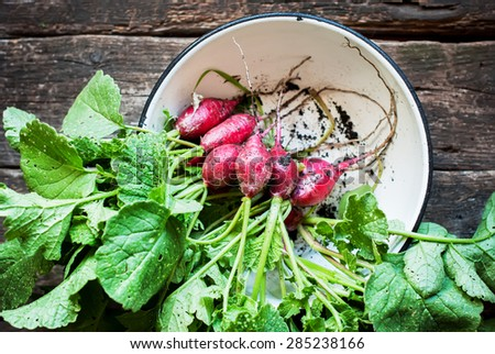 Fresh Organic Radish in Bowl on wooden background, rustic style, selective focus - stock photo