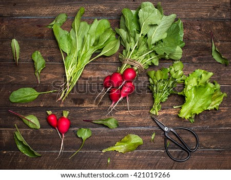Fresh organic radishes and greens herbs just from the garden on rustic wooden background - stock photo