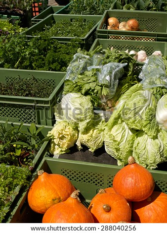 Fresh organic vegetables at a colorful farmers market in Germany - stock photo