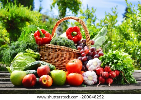 Fresh organic vegetables in wicker basket in the garden. - stock photo