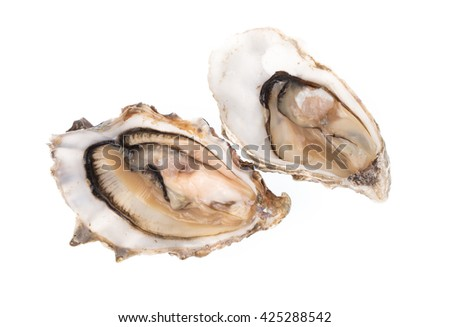Fresh oyster isolated on white background - stock photo