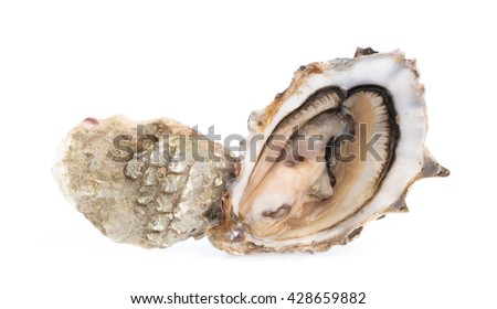 Fresh oyster with slice lemon isolated on white background - stock photo