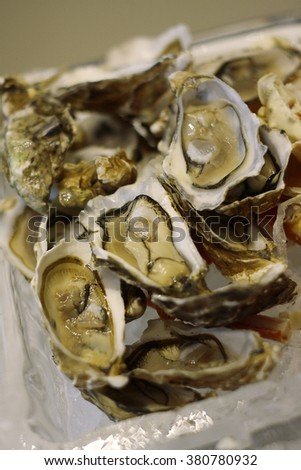 Fresh oysters on ice, selective focus, shallow DOF. - stock photo