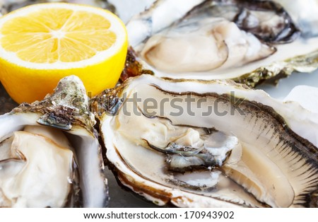 Fresh oysters on ice with lemon close up - stock photo