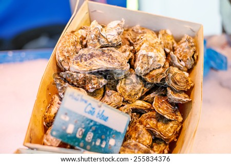 fresh oysters on mediterranean fish market. Organic local seafood in Arles, Provence, France. - stock photo