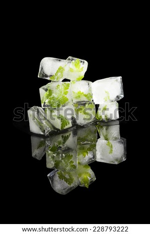 Fresh parsley leaves frozen in ice cubes isolated on black background. Culinary frozen herbs. - stock photo