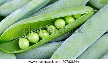 fresh pea background - stock photo