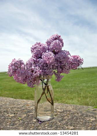 Fresh picked lilacs on an old stone wall in the country. - stock photo