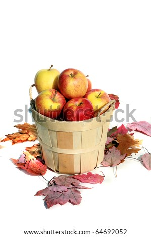 Fresh picked red apples in a wooden basket with fall leaves isolated on white with room for your text - stock photo