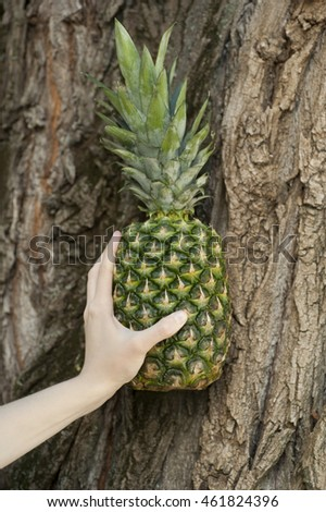 Fresh pineapple on a wood background