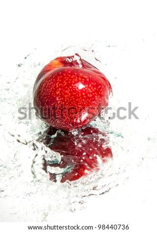Fresh plum in water splash - stock photo