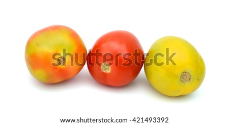 fresh plum tomatoes isolated on white
