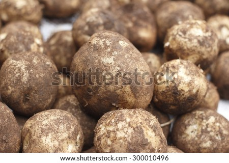 fresh potato - stock photo