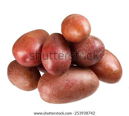 Fresh potatoes on a white background. In isolation. - stock photo