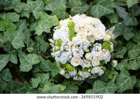 Fresh pretty wedding bouquet of white rose and green flowers on background of wild curly ivy plant splendid natural decoration for marriage anniversary day outdoor closeup, horizontal picture - stock photo