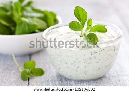 fresh quark with herbs in a bowl - stock photo