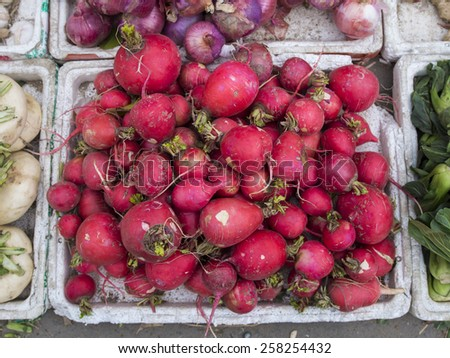 Fresh radish among other vegetables in a marketplace. - stock photo