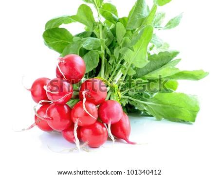 Fresh radish isolated on white background - stock photo