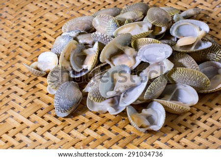 Fresh raw clam in the colander bamboo - stock photo
