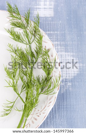 Fresh raw dill on white vintage plate on blue wooden background, top view. Culinary aromatic herbs, country style. Healthy cooking. - stock photo